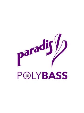 Paradis-Guitars POLYBASS
